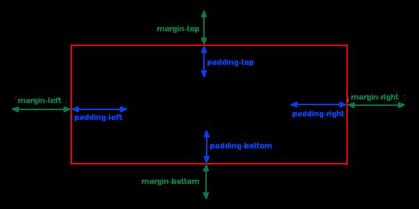 Minh họa margin và padding trong css